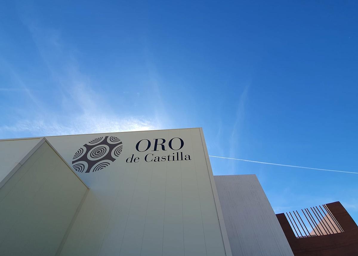 Primera vendimia en la nueva bodega de Oro de Castilla
