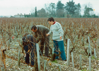 1958 primeras-plantaciones
